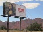 A helpful reminder at mile 25, west of St. George, UT
